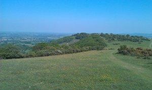 Mount Harry from Blackcap