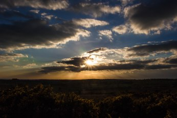 Sunset, Ashdown Forest
