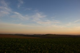 Cissbury Ring, Church Hill and Blackpatch Hill