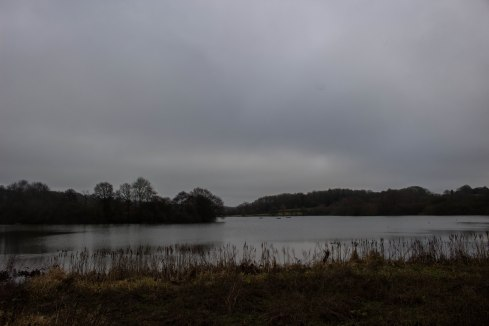 Weir Wood Reservoir