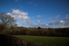 Penhurst Manor in the distance