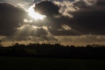 High Weald, near Penhurst