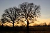Shemanbury, Low Weald