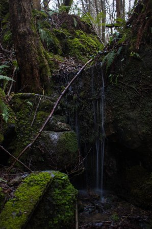 Waterfall, Beckley Wood, High Weald