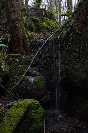 Waterfall, Beckley Wood, High Weald