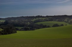 Saddlescombe Farm beyond North Laine