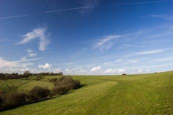 Newtimber Hill