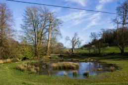 Saddlescombe Farm Pond