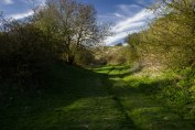 Another entrance to the chalk pit