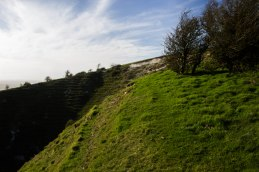 Chalk pit on Newtimber Hill